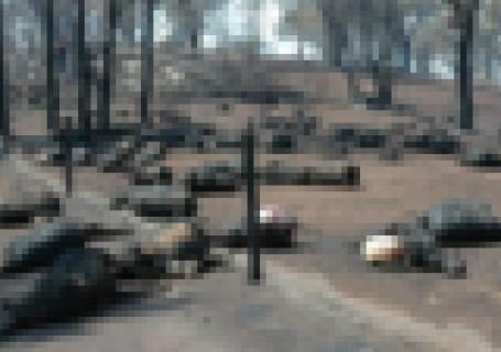 【閲覧注意】オーストラリア、森林火災の後に撮影された1枚がヤバい