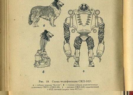 犬の首を切断し、「ロボット」にするという計画