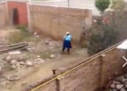 【閲覧注意】隣のおばちゃんが犬に石投げて殺してるんだけど・・・(動画)