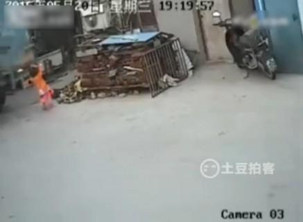 【閲覧注意】小さな女の子が遊んでいます。トラックがやって来ました