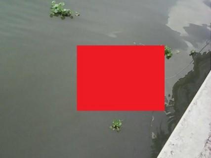 """【閲覧注意】川に何か浮いてる ⇒ """"これ"""" だった時のトラウマがヤバい"""