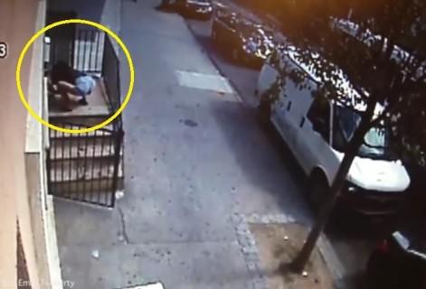 【動画】女の子が人ん家からヨークシャー・テリアを盗んでいく様子怖すぎ・・・