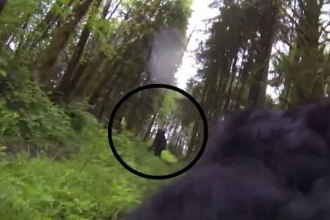 """犬にカメラ付けて山に放ったら """"信じられないもの"""" 撮影してきた・・・(動画)"""