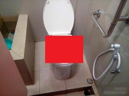 【閲覧注意】女性が入った後のトイレの便座の蓋開けたら・・・(画像)