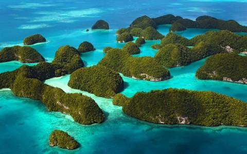 """【閲覧注意】ガラパゴス諸島の """"とある生物"""" の顔を見てトラウマになった・・・(画像)"""