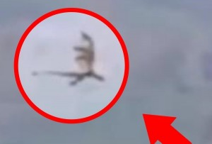 中国の上空で「ドラゴンとしか思えない」クリーチャーが撮影される(動画)