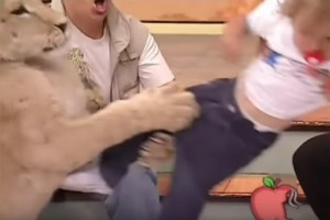 テレビ番組でスタジオに来たライオンが1~2歳の幼女に噛みつくとか酷い放送事故だよな