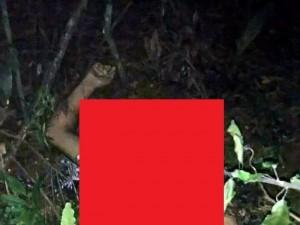 【閲覧注意】71人が死亡したコロンビアの飛行機墜落事故。現場から恐ろしい画像・動画が流出・・・