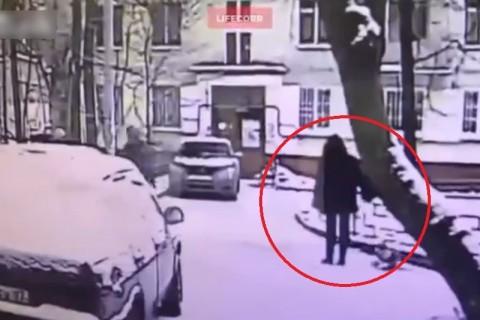 21歳の女の子、犬の散歩をしていたら木に殺される…(動画)