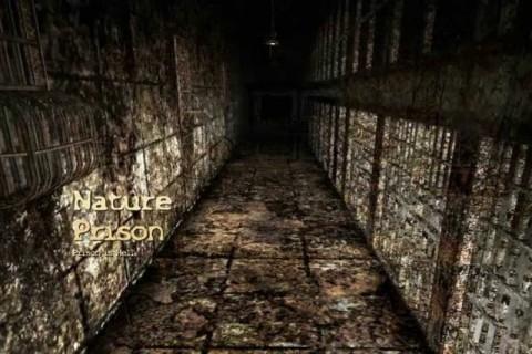【超!閲覧注意】刑務所内から流出した動画でここまでヤバいものは初めて見た