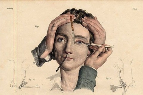【閲覧注意】100年前、人間を解剖しまくった結果完成した「絵」・・・(画像)