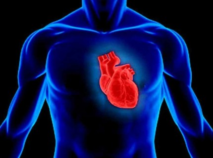 【閲覧注意】事故で人間の「心臓だけ」が飛び出た結果・・・信じられない事が起こる(動画)