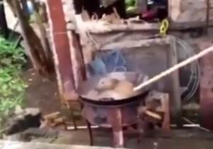 【閲覧注意】生きている犬を沸騰した鍋に入れて爆笑する中国人・・・(動画)