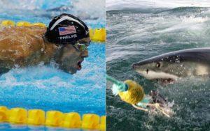 「マイケル・フェルプス」vs.「ホオジロザメ」、海でガチレースした結果・・・(動画)