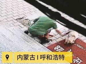 【閲覧注意】ネットで話題の「犬殺しおじさん」の動画、見てはいけないレベル…