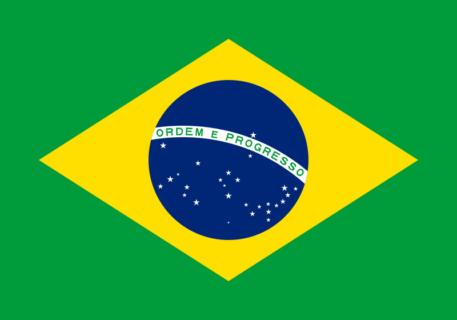 【閲覧注意】ブラジル人、マジでイカレてる(動画)