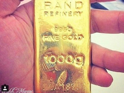 南アフリカ共和国のお金持ちの子供、凄すぎる・・・(画像)