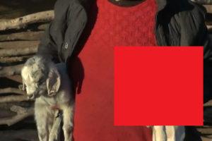 アルゼンチンの村で住民をパニックに陥れた「悪魔の生物」が生まれる(画像)