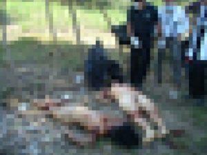 【閲覧注意】行方不明になっていた10代の少女2人、素っ裸でこうなっていた…(画像)