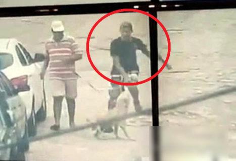 """衝撃の結末。 警察から逃げてる犯罪者、そこへ """"世界で最も人を殺している犬"""" が現れ・・・!(動画)"""