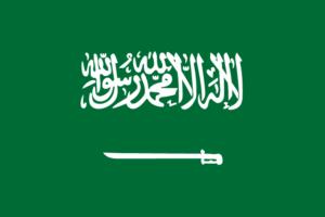 """【閲覧注意】サウジアラビアの """"インスタ映え"""" が地獄絵図すぎると話題に"""