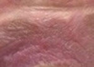 【閲覧注意】世界一ヤバイ「マ●コの画像」をご覧ください…(画像あり)