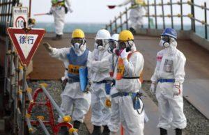 海外「日本の福島でとんでもない奇形生物が誕生! 放射能の影響か」(画像あり)