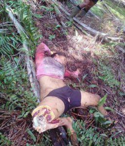 【閲覧注意】2日前、トラに食べられて死亡した女性の画像をご覧ください・・・・・