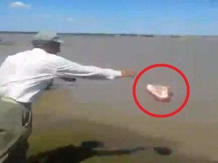 """【衝撃】""""絶対に入ってはいけない湖"""" がヤバい。動物の肉を投げ入れた瞬間…(動画あり)"""