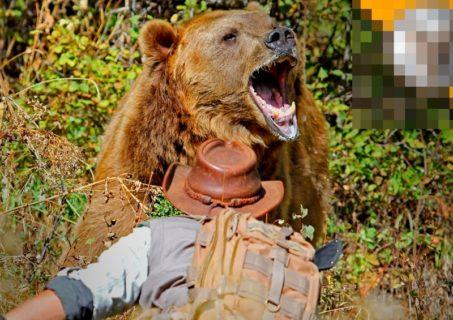 """【閲覧注意】クマに """"保存食"""" にされた人間・・・・・(画像あり)"""