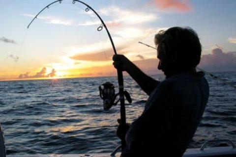 【閲覧注意】釣り人、物凄い死に方をする(画像あり)