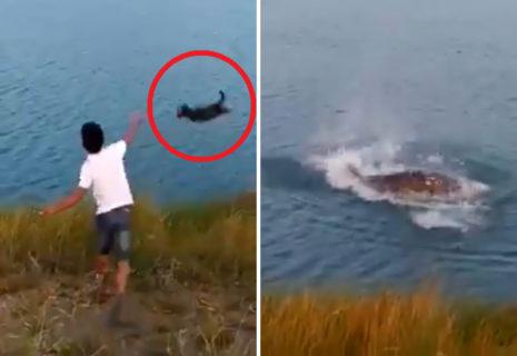 【狂気】子犬を川に投げて「ワニに食べさせる」動画に批判殺到。「こいつだけは生かしておくな」(動画)