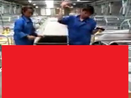 【閲覧注意】中国の養豚場から流出した恐怖映像が「この世のものとは思えない」と話題に