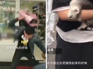 【狂気】ペットショップで子猫を叩き殺す男が異常すぎる。国籍はもちろん…