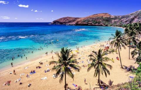 【閲覧注意】この前ハワイで生ハメSEXした現地女とのハメ撮り晒してくwwwww
