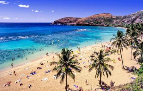 【閲覧注意】ハワイで朝の散歩中、下半身裸の女性がいた ⇒ 近付いた結果…(動画あり)