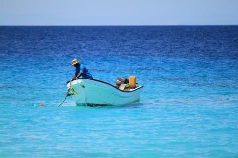 """【閲覧注意】漁師さん、水中で """"最も恐ろしいもの"""" を発見してしまう…(画像あり)"""