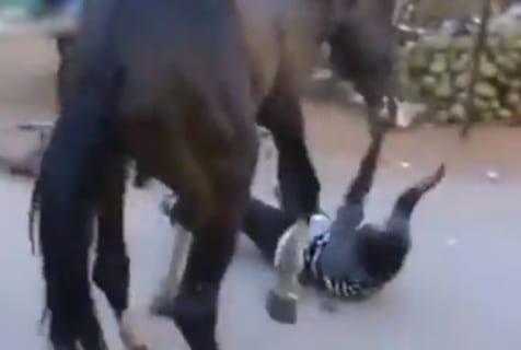 【閲覧注意】馬、本気出したら人間なんて余裕だった (動画あり)