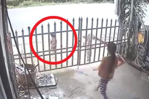 【動画】お母さん、自分の子供がバスに轢かれそうなのに途中で救出を諦めてしまう