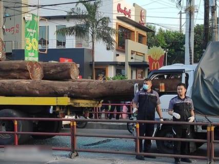 【閲覧注意】トラックが積んでた巨大丸太。後ろの車のドライバーを圧砕潰死(画像あり)