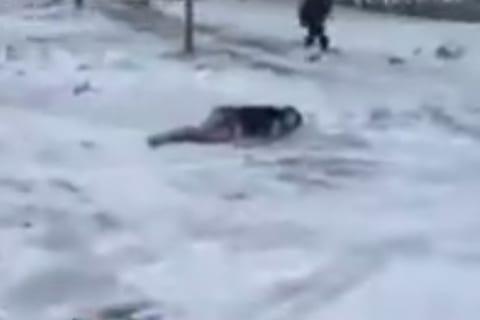 【閲覧注意】-20℃の日に外で寝た男子高校生の末路をご覧ください