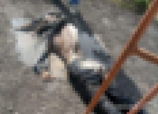 【閲覧注意】速報。貯水タンクから人間の遺体。この水を私達は…(画像あり)