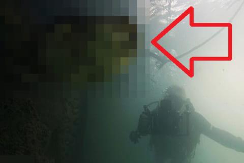 【超驚愕】アマゾン川ダイバーさん、水中でモンスター級の化け物と遭遇してしまう…