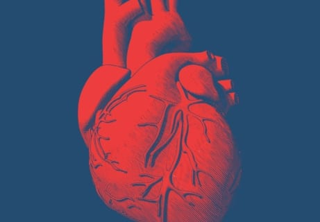 【閲覧注意】事故で人体から飛び出した心臓、なぜか元気に動き続ける・・・(動画あり)
