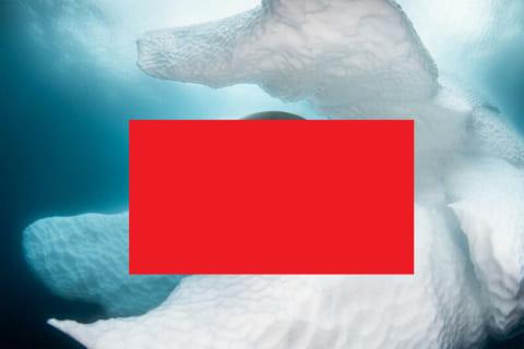 【驚愕】南極の氷の下の海にカメラを入れたらとんでもないモノが撮れた…(画像あり)