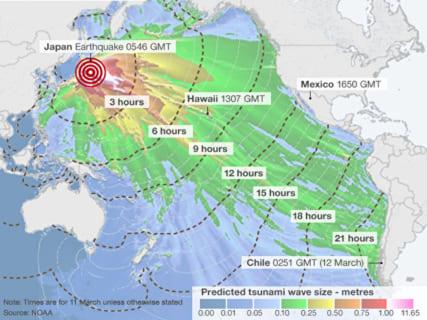 【閲覧注意】今世界中を震撼させている「日本の衝撃映像」がこちらです・・・・・