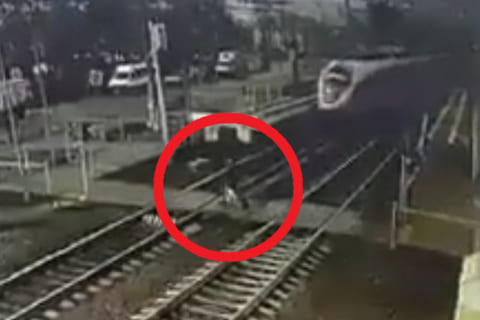 【閲覧注意】新幹線に撥ねられたら人間はこうなるらしい…やばいぞ…(動画あり)