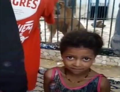 【衝撃映像】ライオンの檻の前で動画を撮る少女 ⇒ この後ヤバい事が起こります・・・