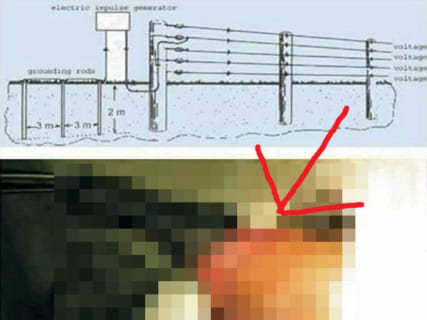 """【閲覧注意】""""電気柵"""" に立ちションしたらチンチンはこうなる・・・恐ろしい画像"""