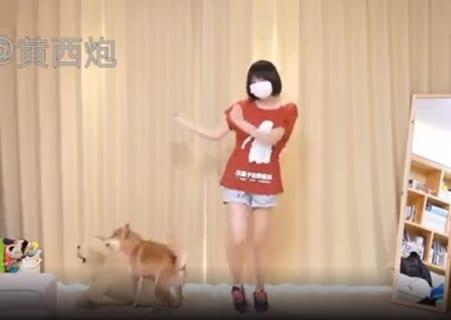 【狂気】ただダンスしてるだけの女の子、犬を興奮させてしまうwww(動画あり)